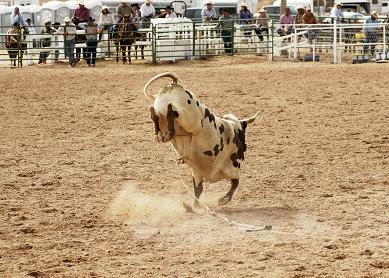 Mt Isa International Rodeo
